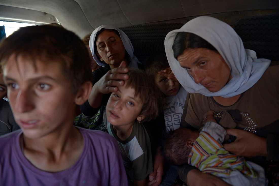 Tusentals familjer flyr Sinjarberget i norra Irak för att undkomma terrorarmén is - många är barn. De kommer över den provisoriska bron över floden Tigris.