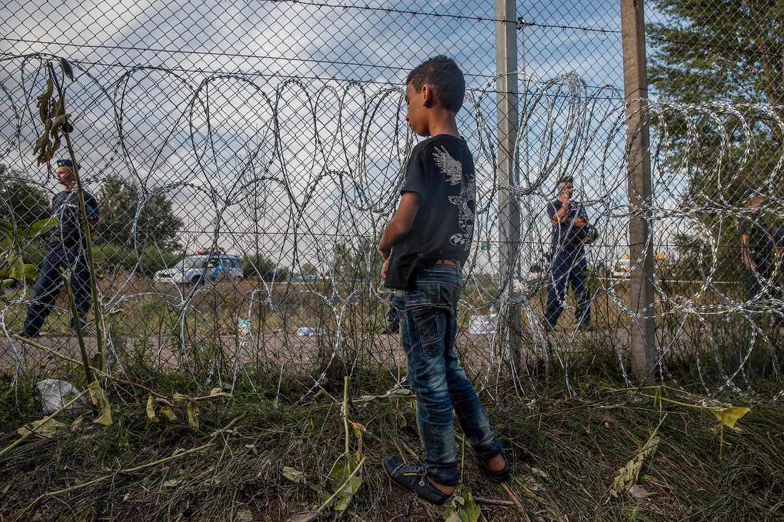 Ungerns taggtrådsbarriär patrulleras av militären.