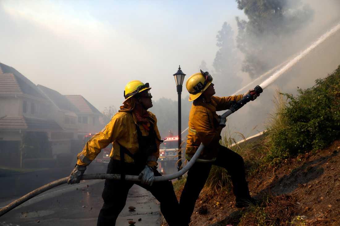 Brandmän sprutar vatten i kampen mot Woolsey-branden i Westlake Village