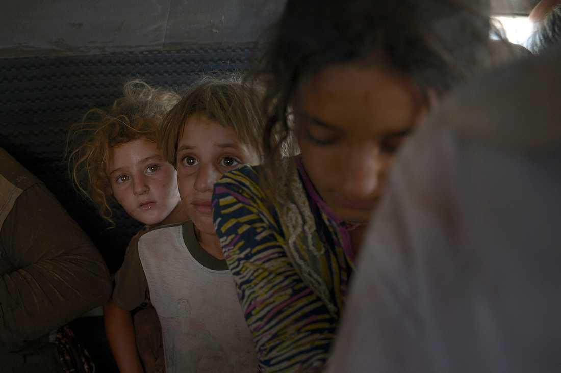 Tusentals familjer flyr Sinjarberget i norra Irak för att undkomma terrorarmén is - många är barn. De kommer över den provisoriska bron över floden Tigris.  I den överfulla lilla minibussen hittar vi flera vuxna och 12 barn.