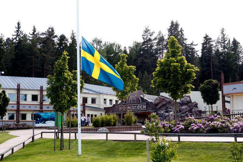 Flaggan hängde på halv stång på Kolmården i går.