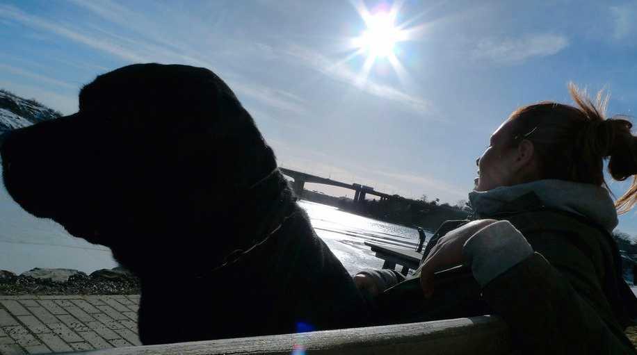 Labradoren Selma och matte Anna njuter av solen på Lilla Essingen i Stockholm på lördagen. Foto: Scanpix