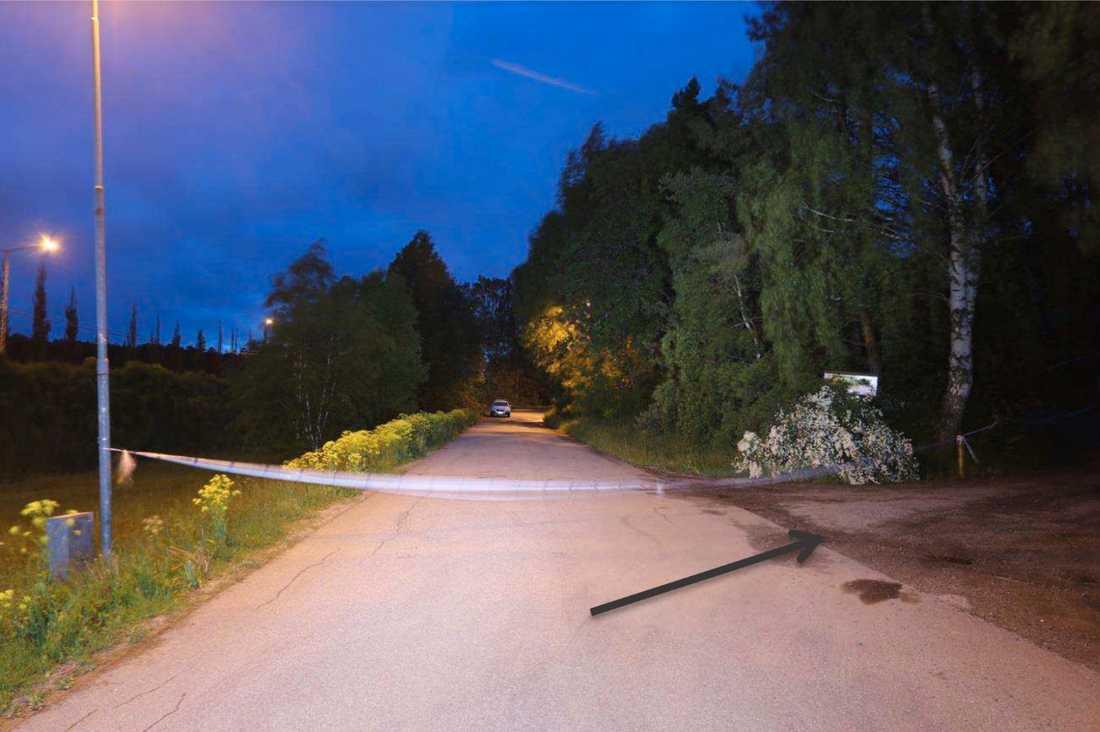 Vägen där de blodiga männen gått för att ta sig ut mot motorvägen för att få hjälp.