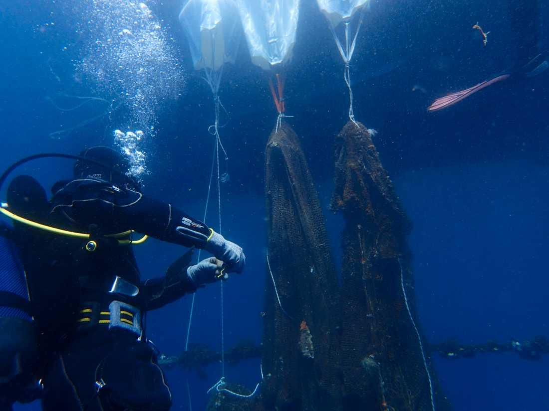 Dykare tar hand om bortslängda fisknät av plast nära ön Poros i den grekiska arkipelagen. Plastnäten dödar årligen miljontals marina djur.