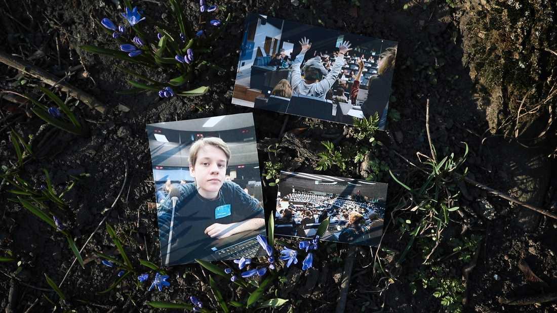 Andreas Magnussons foton från EU-parlamentet