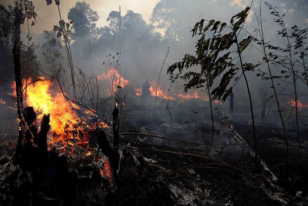 Brasilien tackar nej till ekonomiskt stöd från G7-länderna för att underlätta släckningsarbetet i Amazonas.