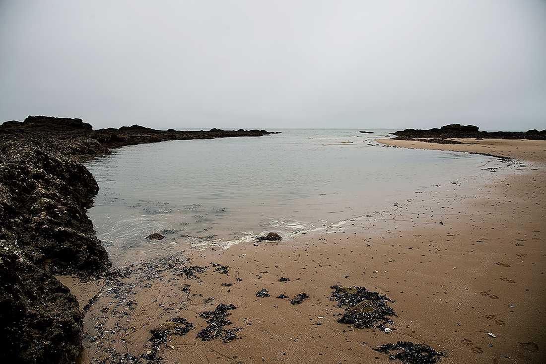 Det pågår diskussioner för att stranden ska stängas av.