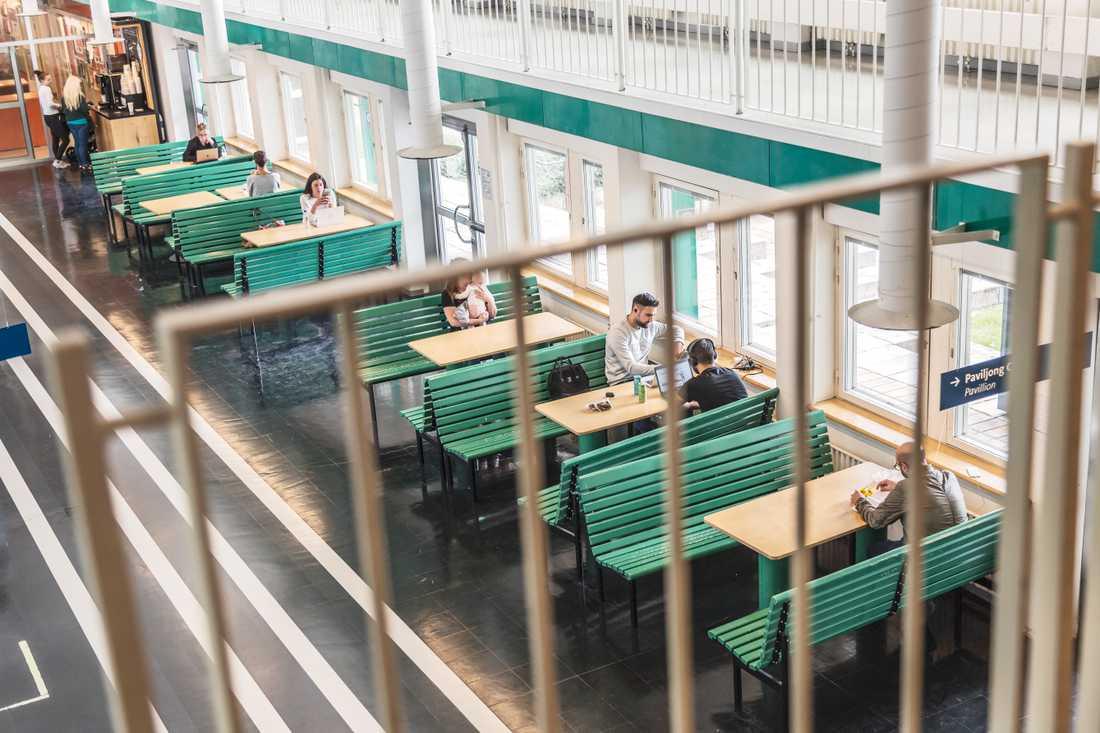 Flera tusen utländska studenter berörs av regeringens nya besked. Arkivbild.