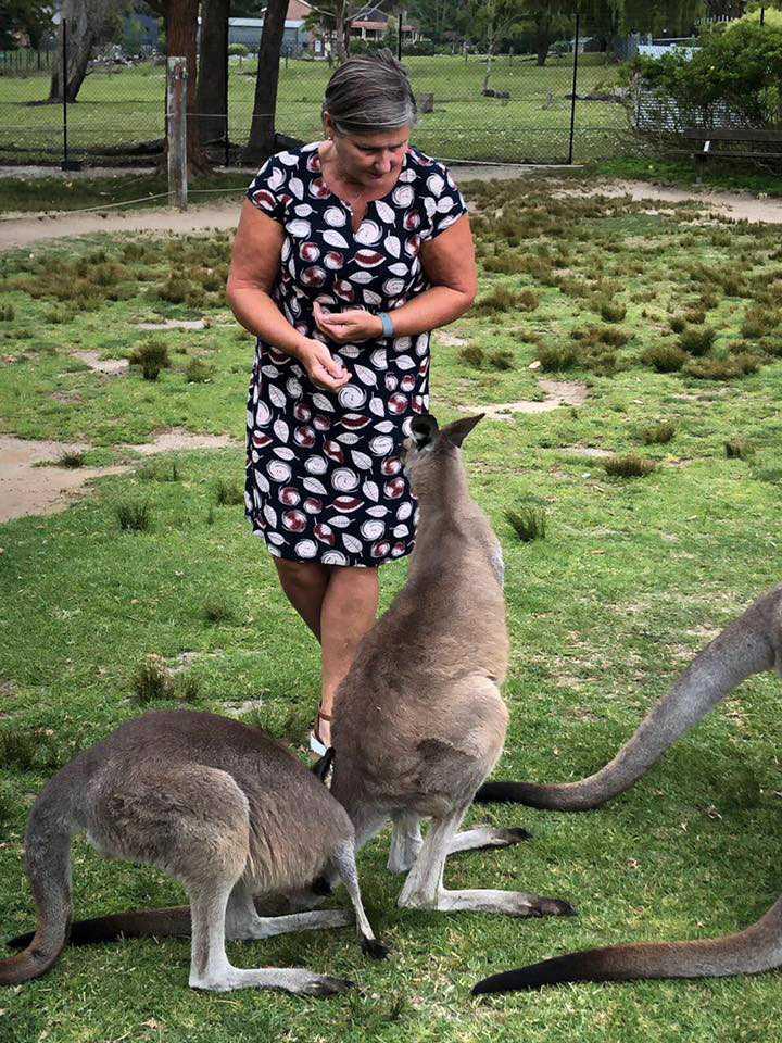 På zoo i Melbourne. Matdags för känguruerna.