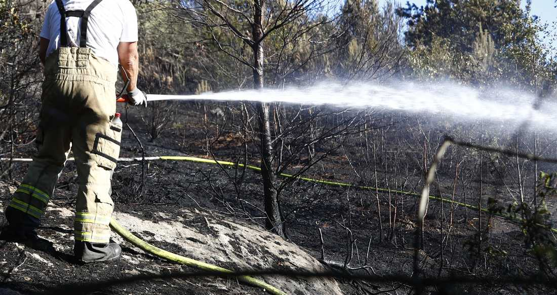 Arkivbild. Inte brand i Småland.