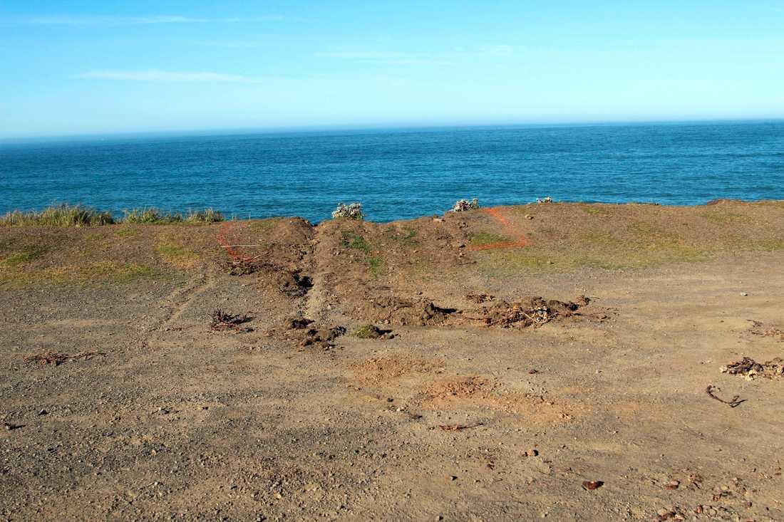 Det syns inga bromsspår på klippan där familjens bil störtade ner i havet.