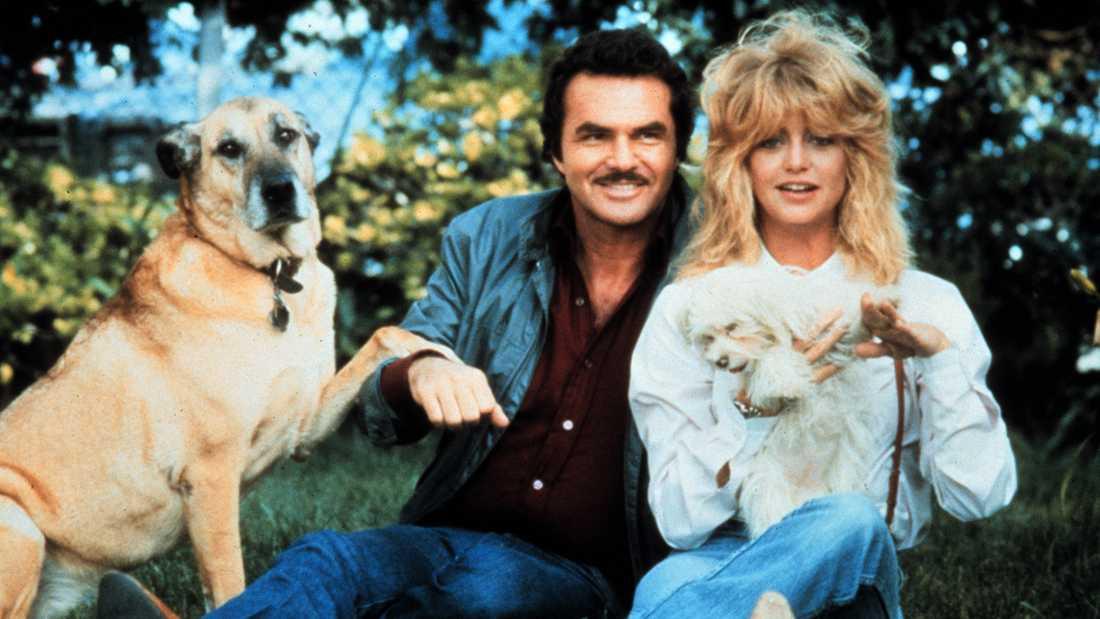 "Burt Reynolds och Goldie Hawn i ""Tjejen som inte ville gifta sig""."