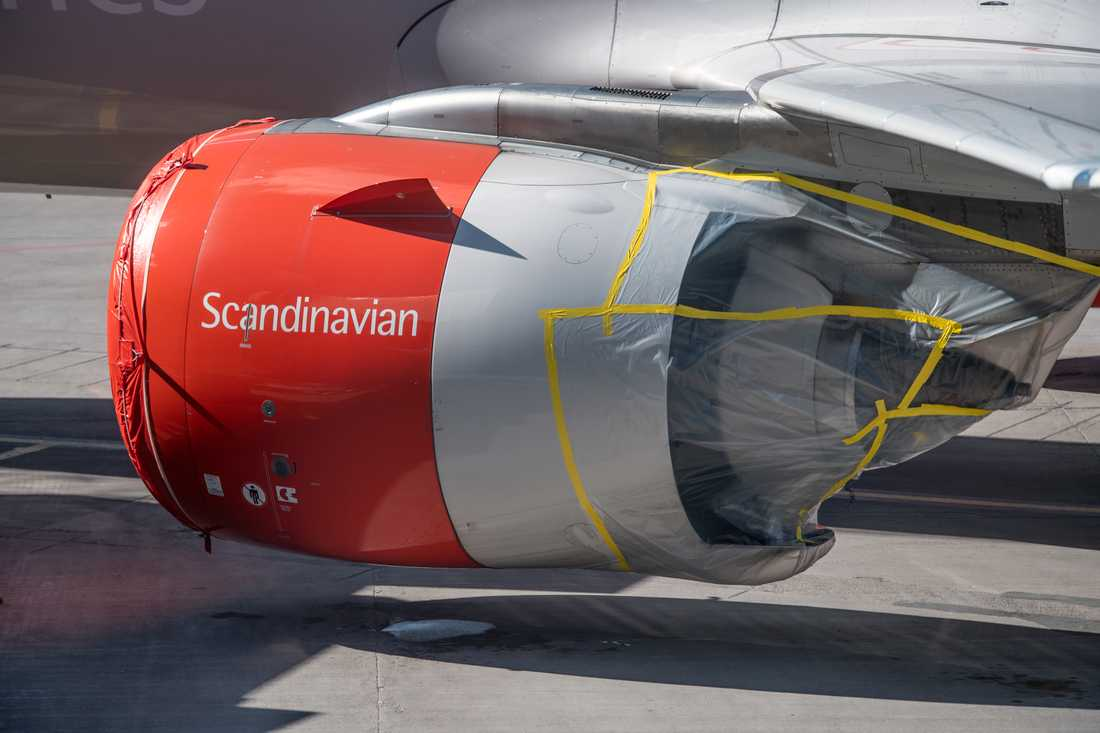 Ett parkerat SAS-plan med skydd för motorn på Arlanda. Arkivbild.