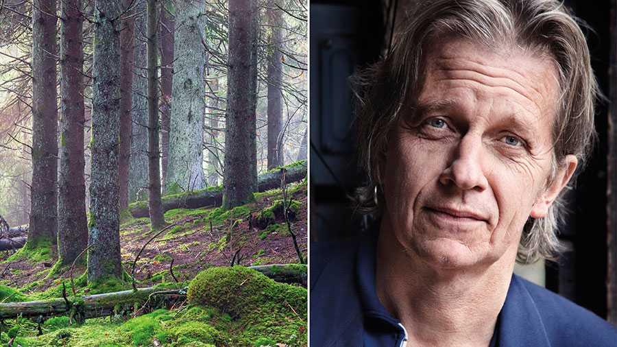 Jag är uppvuxen med myten om att jag bor i ett land med djupa skogar. Nu har jag börjat förstå att det egentligen är en slags plantage jag sitter i. Granbarkborrar, torrsomrar, skogsbränder och stormar har dukat bord, skriver Stefan Sundström.