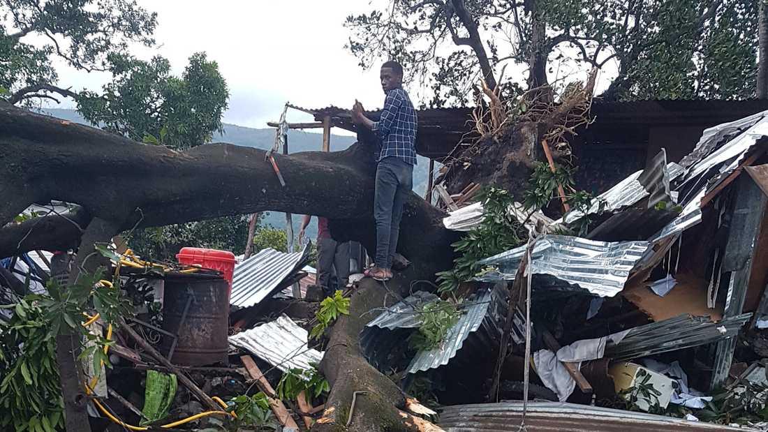 Träd föll när Kenneth svepte in över Komorerna på sin väg mot Moçambique.