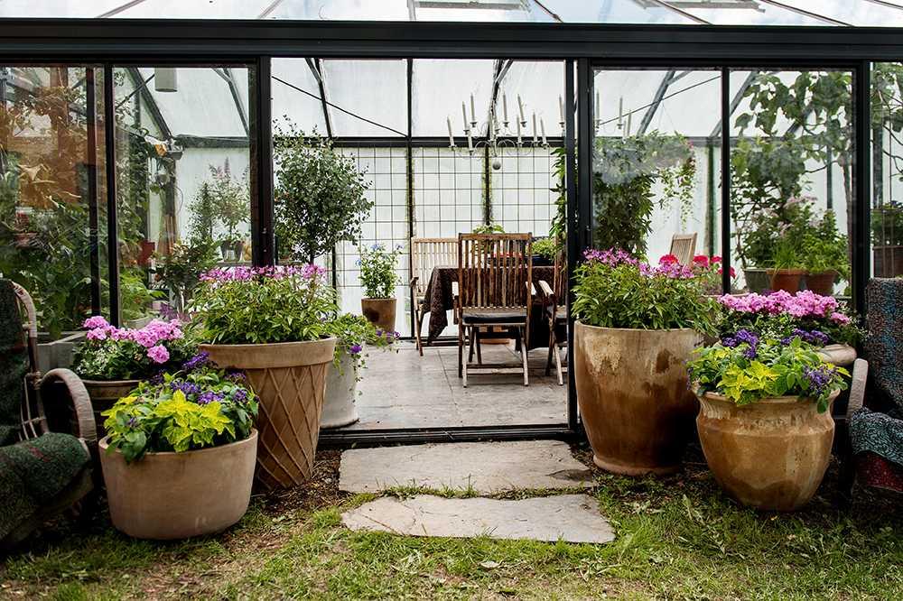 Stora ljusa krukor präglar växthuset.