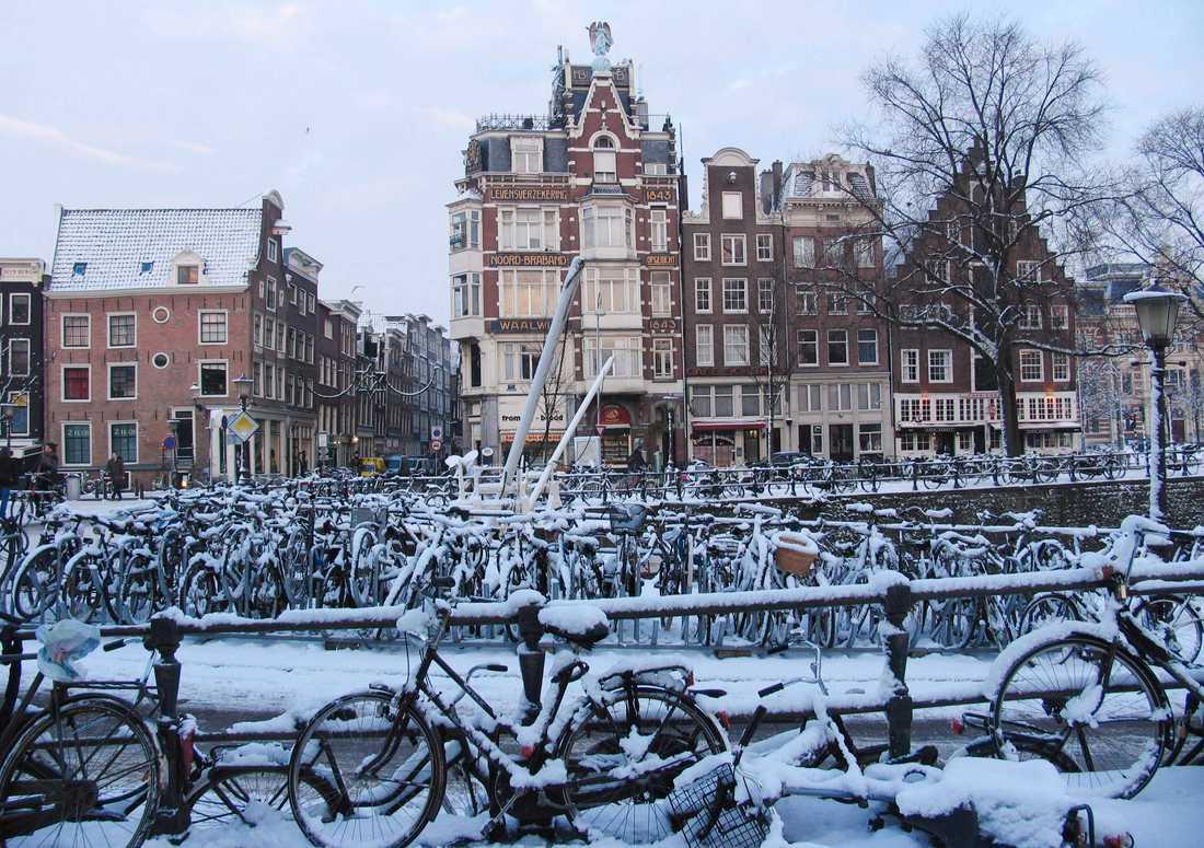 Snötäckta cyklar vid en av Amsterdams kanaler. Bilden är från 2010. Arkivbild.