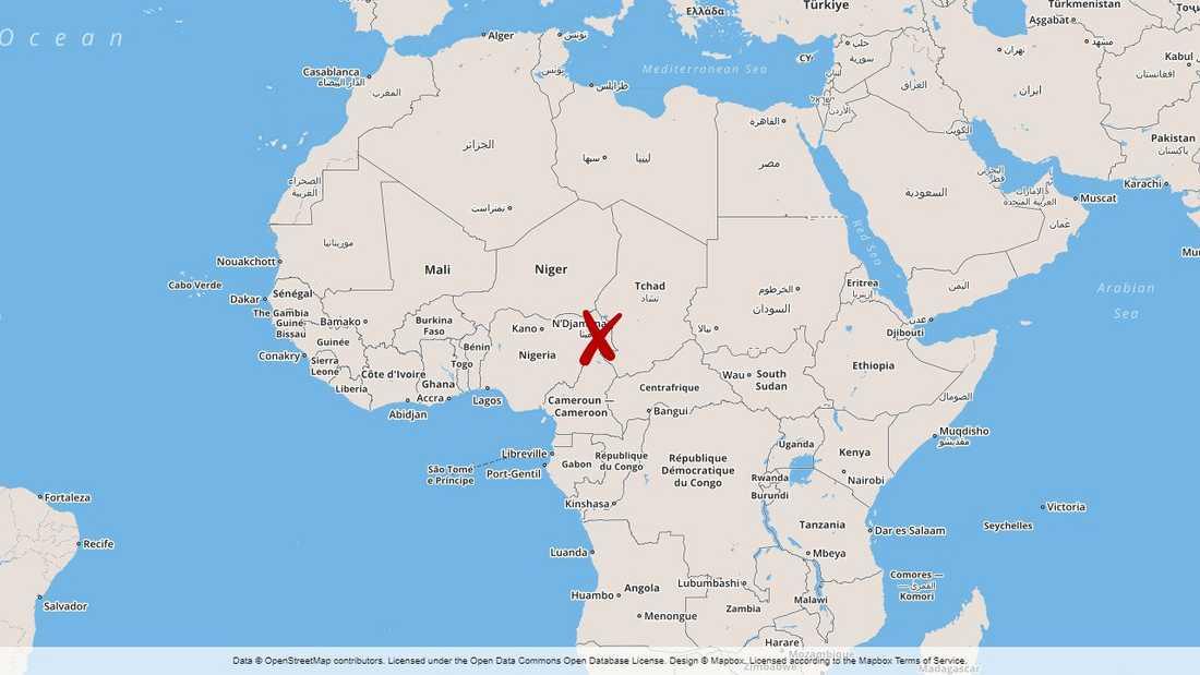 Många har dödats i en Boko Haram-attack i Kamerun.