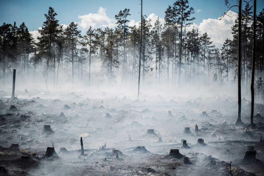 Brand utanför Örnsköldsvik på lördagen.