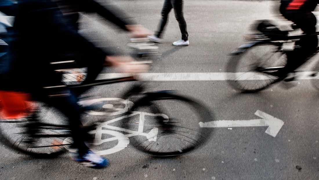 Allt fler Helsingborgare väljer cykeln framför bilen, visar en ny undersökning.