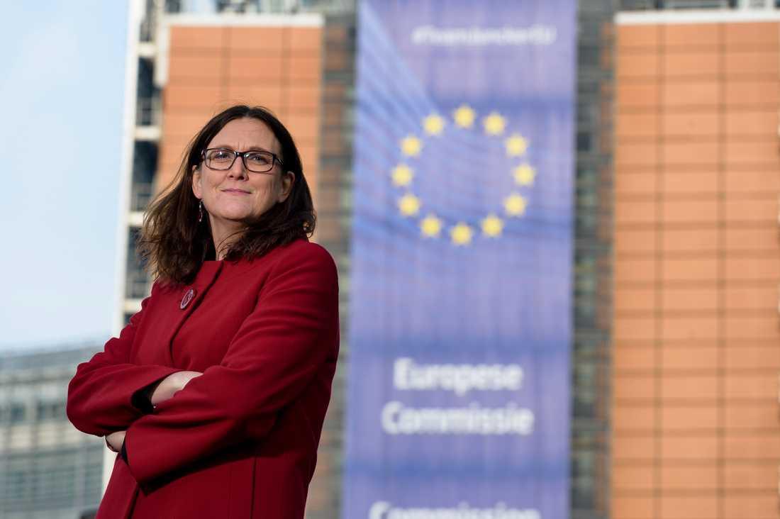 EU-kommissionär Cecilia Malmström vill att Erik Ullenhag blir ny partiledare för Liberalerna. Arkivbild.