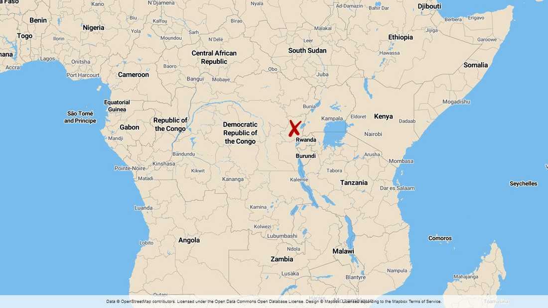 Extremistgruppen ADF (Allierade demokratiska styrkorna) är aktiv i östra Kongo-Kinshasa.