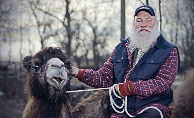 Bengt Erlingsson, kött- och kamelbonde.