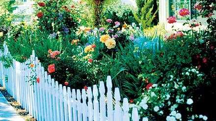 Dags att planera Med tre månader kvar till trädgårdssäsongen är det hög tid att börja fundera på hur du vill att din trädgård ska se ut.