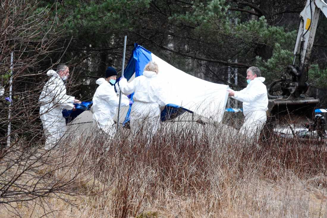 Polisen har inlett en förundersökning om mord sedan en kropp hittats.