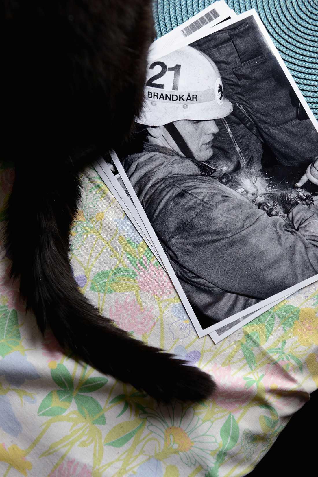 På bilden syns en annan katt, Zack, som Mats också har räddat ur en brand.