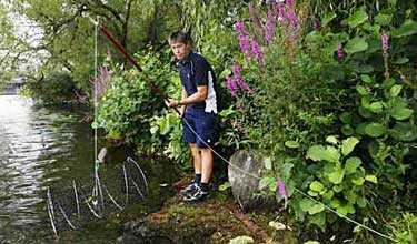 Sverker Lovén, fiskekonsulent vid Stockholms Stads idrottsförvalting, lägger ut en mjärde i Klara Sjö. Han hoppas att de utplanterade signalkräftorna i Mälaren ska ge god fiskelycka i år.