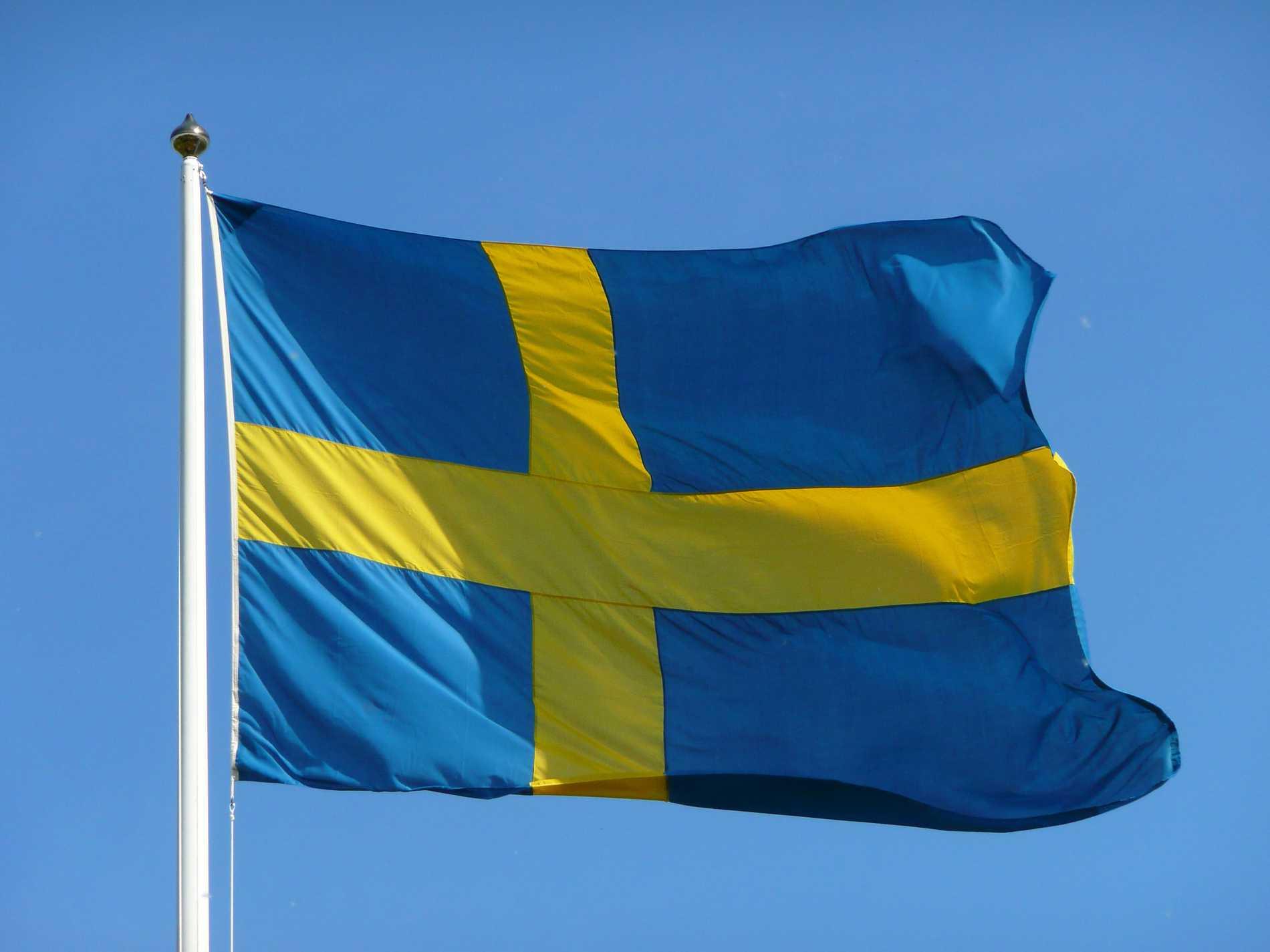 I år har det blivit lag på att varje kommun en gång per år måste anordna en medborgarskapsceremoni för att högtidlighålla nya svenska medborgare och markera medborgarskapets betydelse.