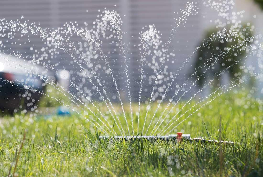Under förra årets torka införde över 100 kommuner bevattningsförbud, mest på grund av kapacitetsbrist hos vattenverken. Arkivbild.
