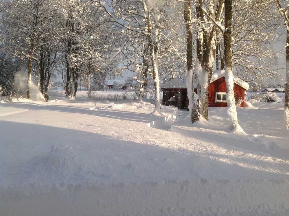 Det har kommit 60 cm snö i Vinninga mellan Lidköping och Skara, enligt en läsare.