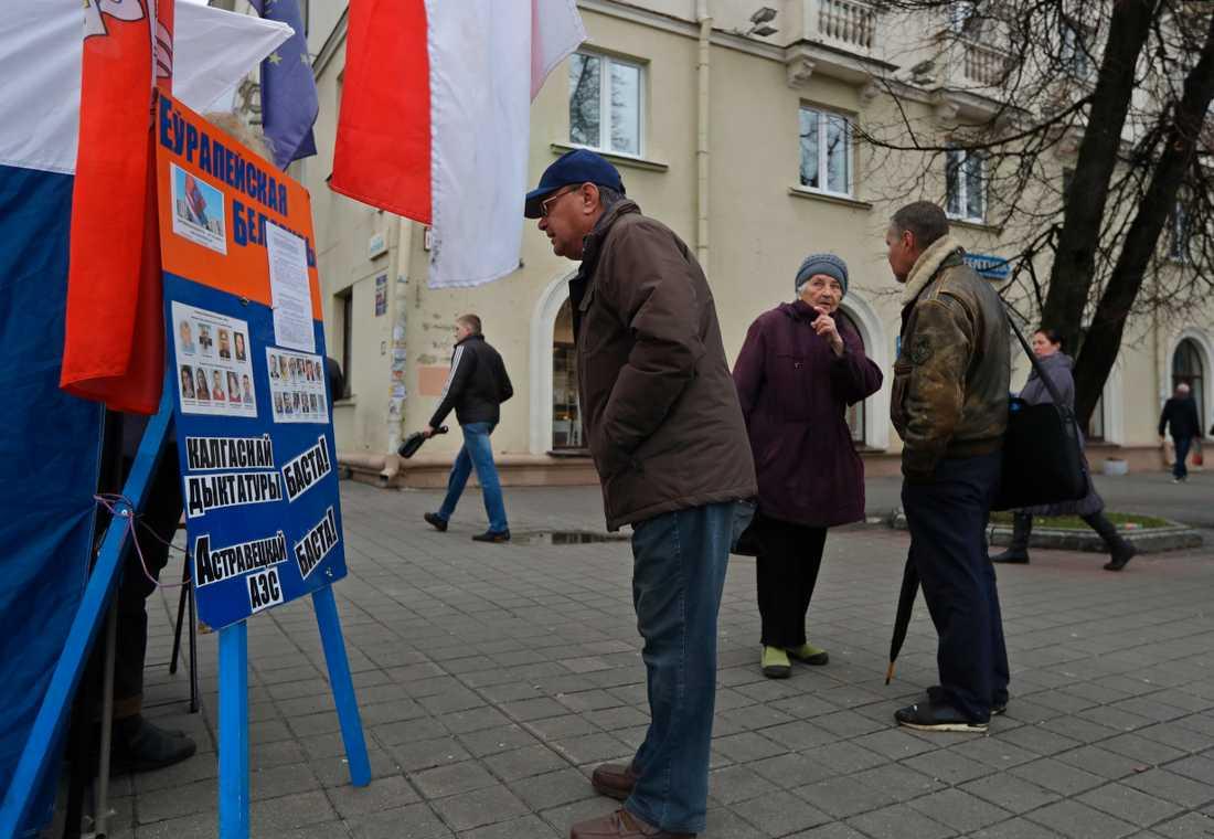 516 kandidater ställer upp i årets parlamentsval i Vitryssland, enligt nyhetsbyrån AP – de allra flesta är regimtrogna.