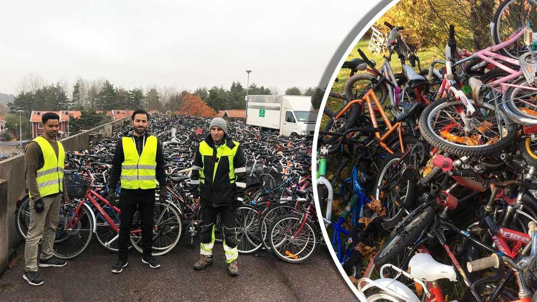 Uppsala Returcyklar samlar in och ger nytt liv till gamla cyklar.