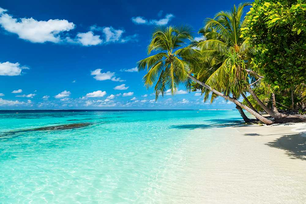 Hit vill vi helst resa. Till en exotisk ö.