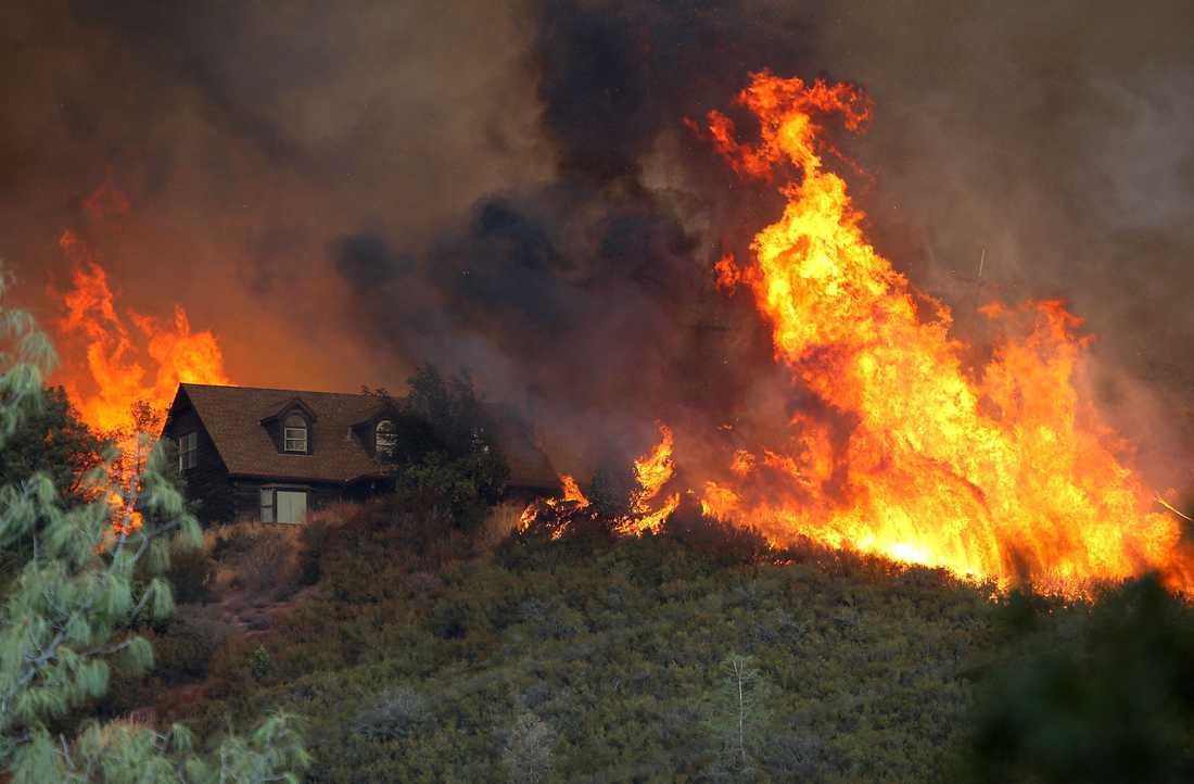 Över 900 brandmän kämpar mot skogsbranden som härjar i Kalifornien. På bilden syns hur lågorna närmar sig ett hus i Lower Lake.