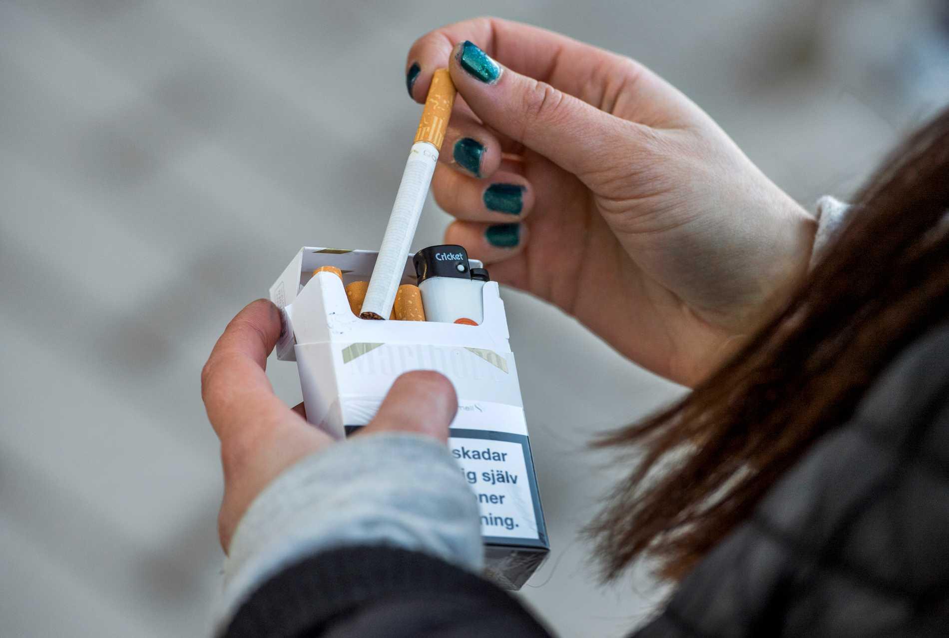 Nikotin gör rökaren beroende av tobak. Men nikotinets påverkan av hjärnan kan försvinna om man lär sig en ny motorisk aktivitet, visar svensk forskning på råttor. Arkivbild.