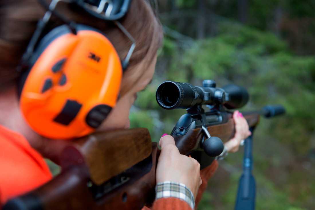 Flera av jaktkorten som skickats ut av Naturvårdsverket är ogiltiga, eftersom de saknar personnummer. Arkivbild.