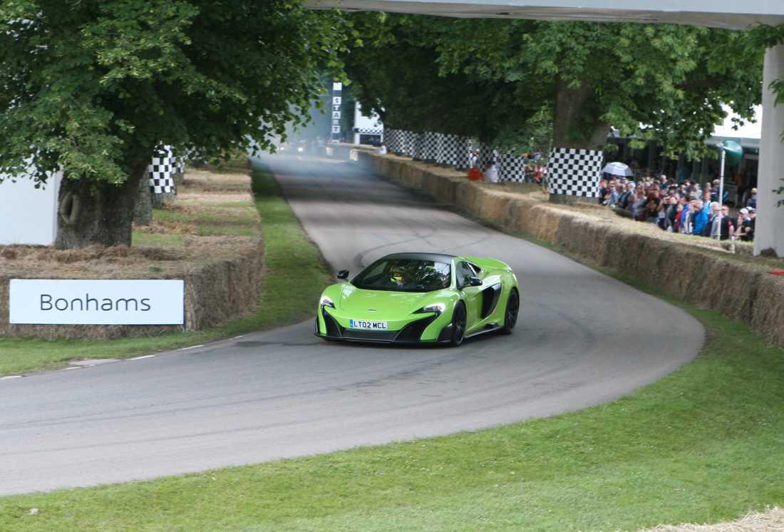 Brittiska McLaren var förstås välrepresenterade på festivalen och alla modellerna i produktpaletten visades upp.