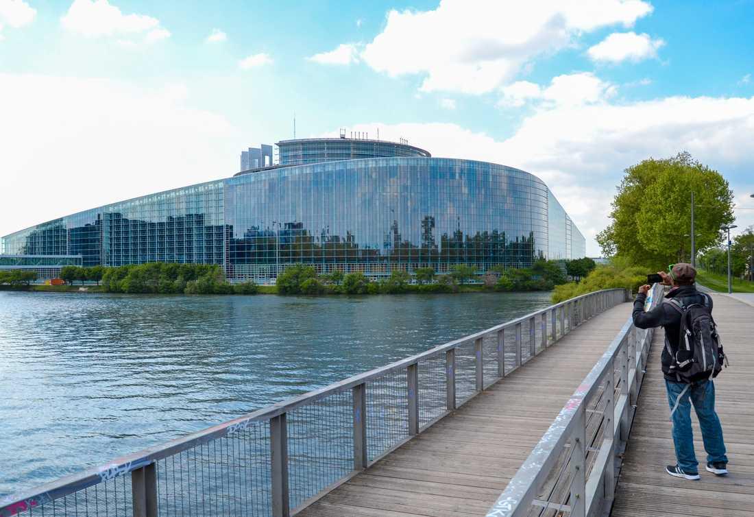 I EU-parlamentets eleganta byggnad i Strasbourg grubblas intensivt över nya regler för upphovsrätt på nätet. Arkivbild.