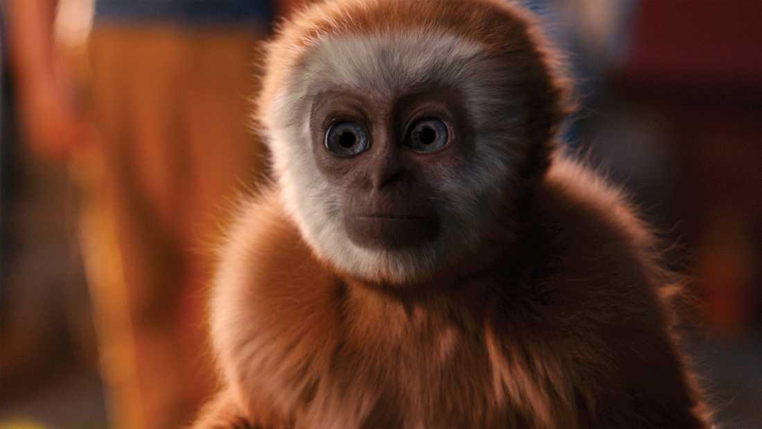"""Chimney gjorde de visuella effekterna till den svenska långfilmen """"Monky"""" 2017. Pressbild."""