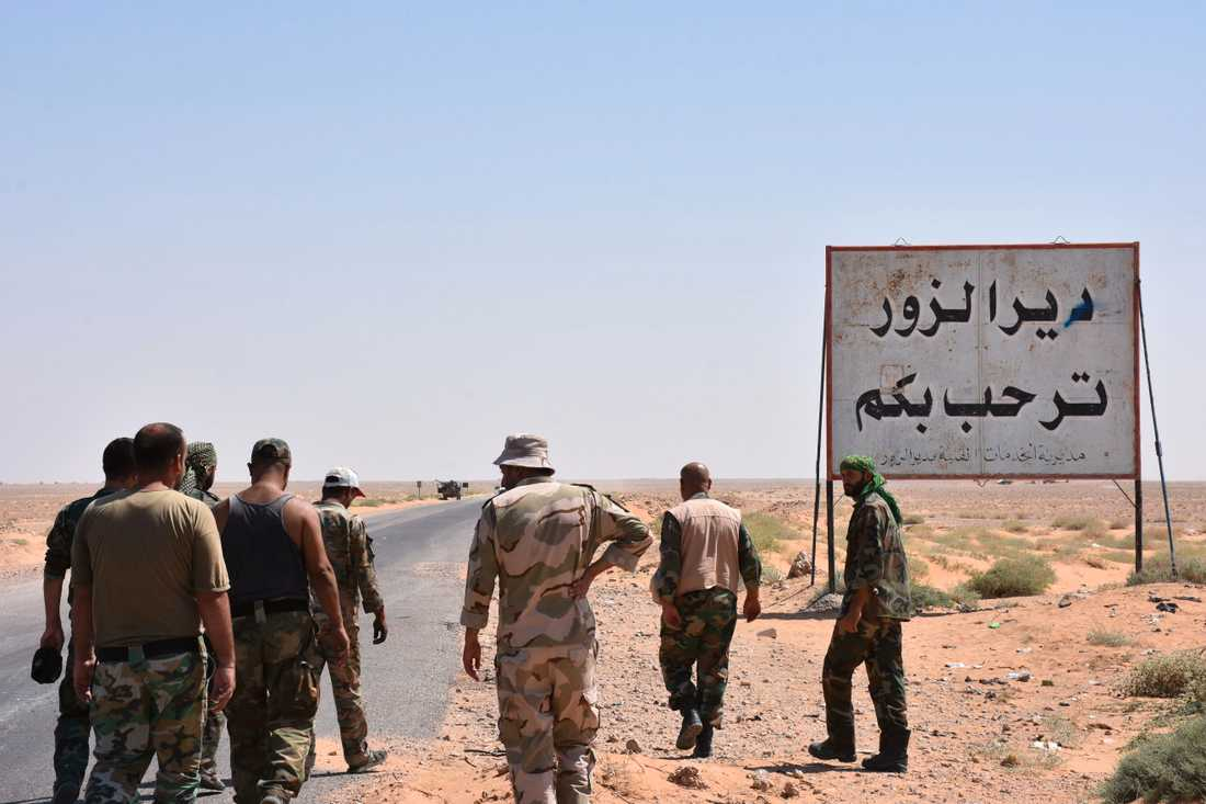Syriska regimtrupper vid Deir Ezzors stadsgräns