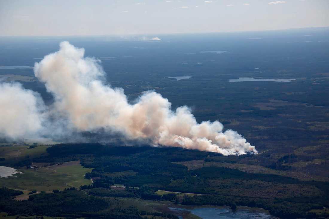 En brand rasar i samma område som brann vid den stora skogsbranden 2014.