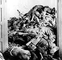 Ihjälgasade fångar i koncentrationslägret Dachau, fotograferade i maj 1945. Kropparna slängdes i högar i väntan på kremering.