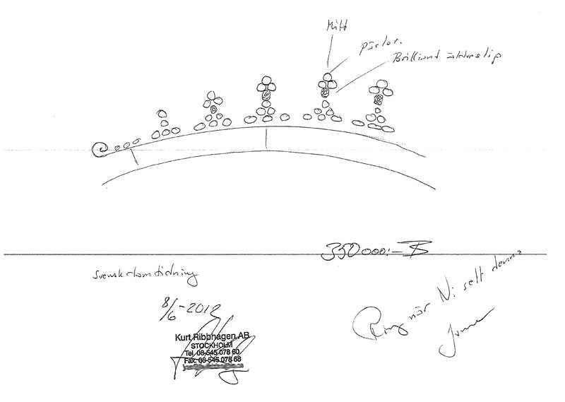En teckning över hur den stulna tiaran ser ut.
