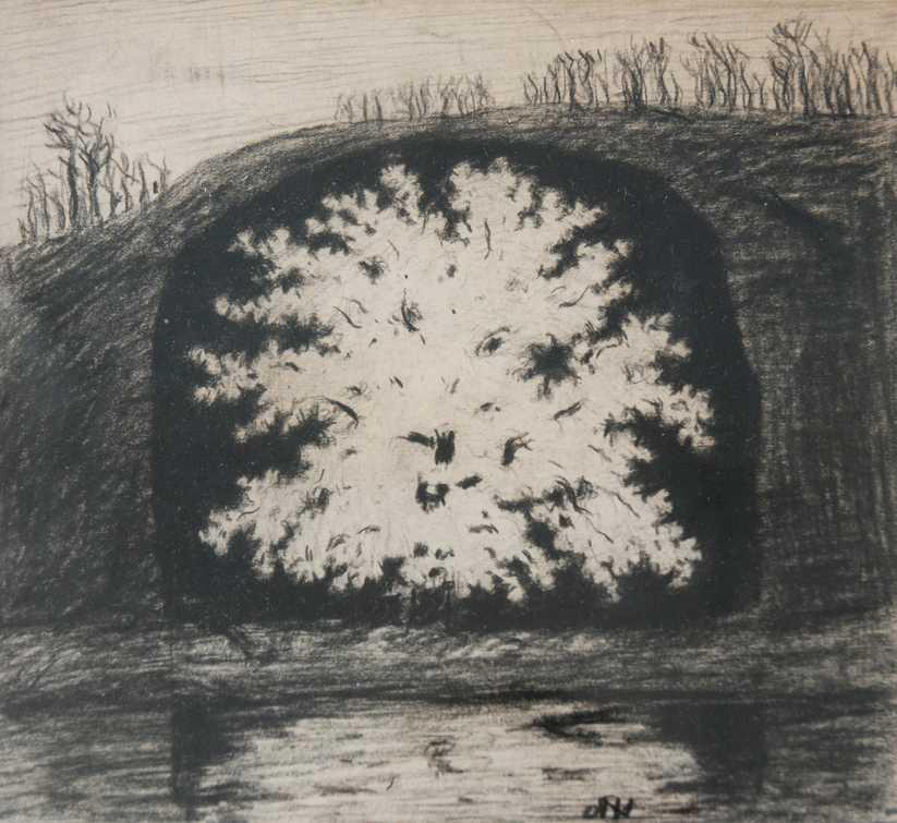 """Sjuk """"Blommande fruktträd i en grotta"""", krita på papper. I Hills sjukdomskonst finns många expressiva trädskildringar."""