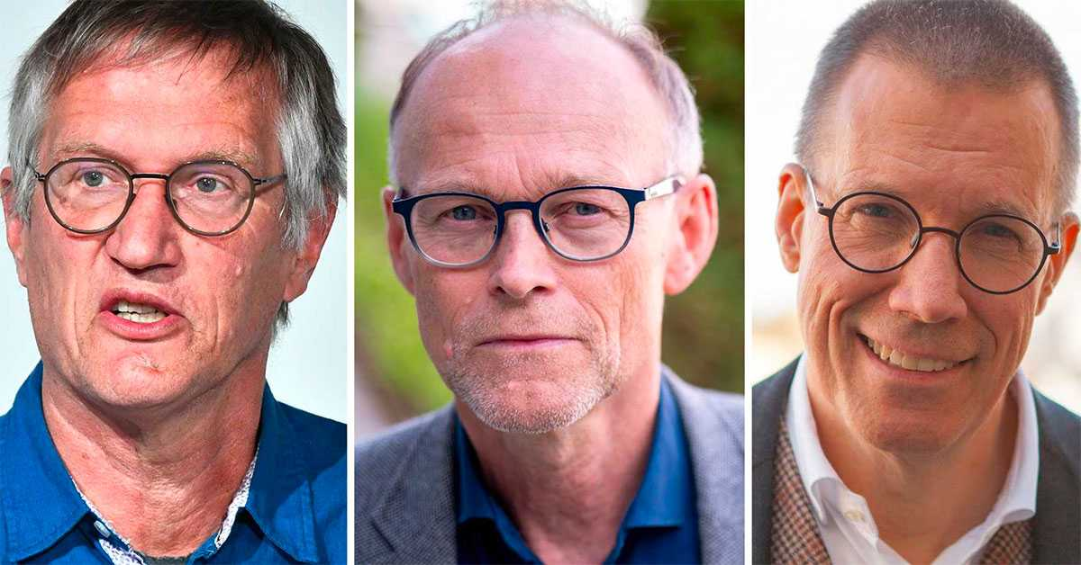 Tegnell, Forland och Elgh om Sveriges kamp mot corona