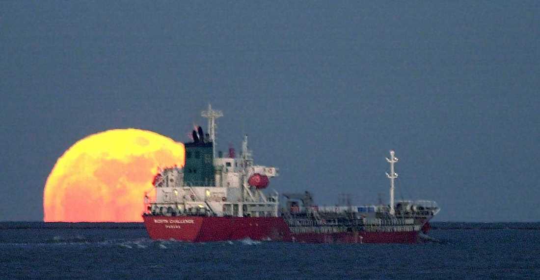 Världshaven trafikeras av ungefär 50000 handelsfartyg, enligt organisationen ICS. Arkivbild.